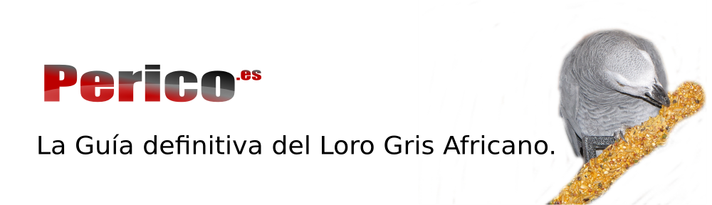 Perico.es